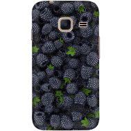 Силиконовый чехол BoxFace Samsung J105 Galaxy J1 Mini Duos (24712-up1368)